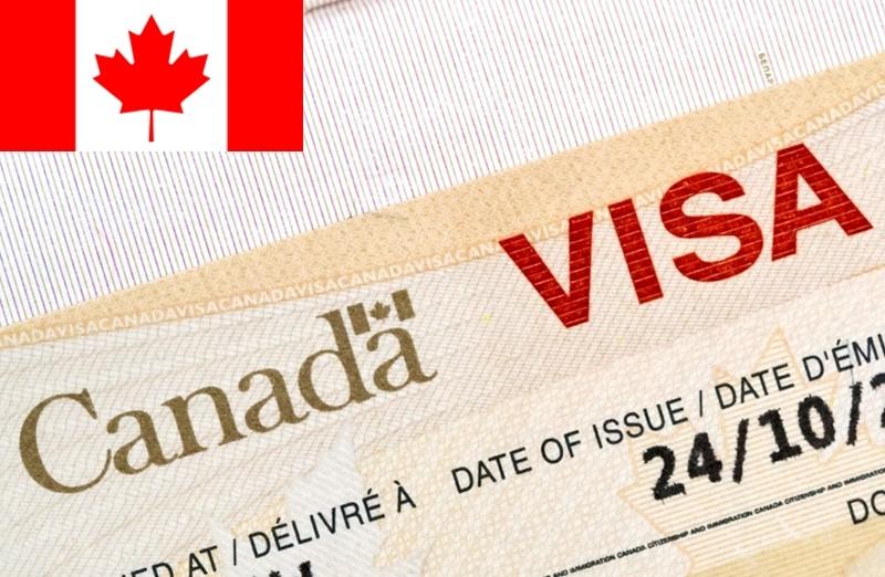 Категории канадской рабочей визы