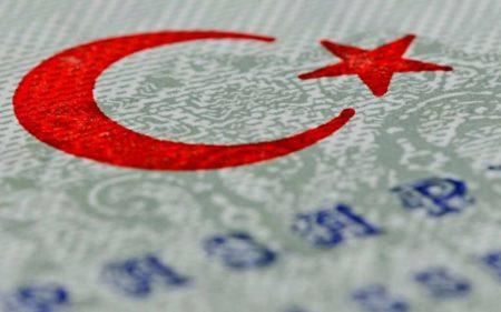 viza-v-turciyu
