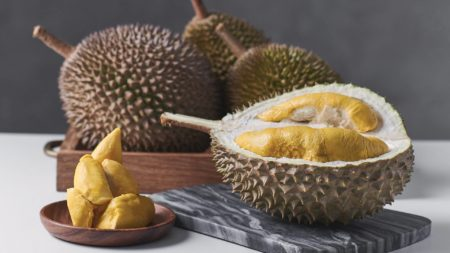 the-durian